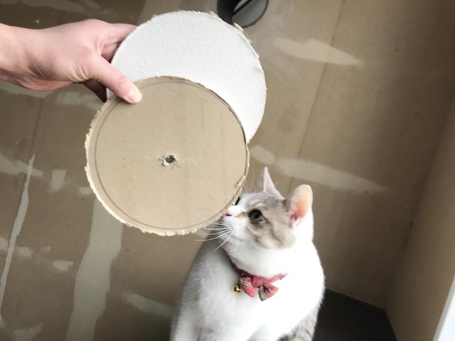猫トンネル 作り方,猫のいる生活,DIY ねこトンネル