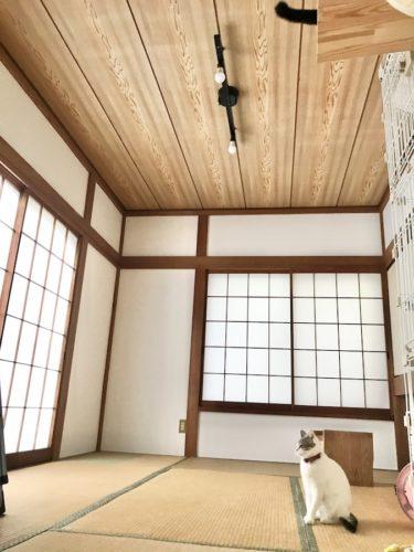 和室の砂壁を白く塗装する方法 セルフリフォーム