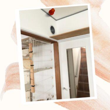 白木洗剤 木部 和室 拭き掃除 掃除好き