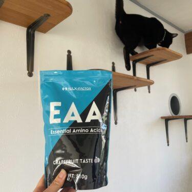 疲労を感じるなら、EAAがおすすめ